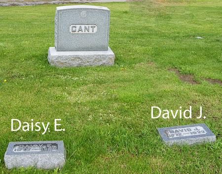 GANT, DAVID JASPER, FAMILY PLOT OF - Taylor County, Iowa | DAVID JASPER, FAMILY PLOT OF GANT