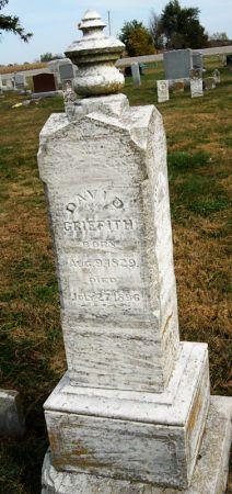 GRIFFITH, DAVID - Taylor County, Iowa   DAVID GRIFFITH