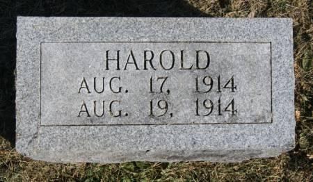 HAMILTON, HAROLD - Taylor County, Iowa   HAROLD HAMILTON