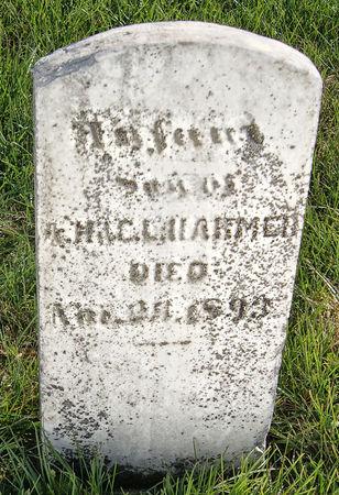 HARMER, ALBERT HENRY, INFANT SON OF - Taylor County, Iowa | ALBERT HENRY, INFANT SON OF HARMER