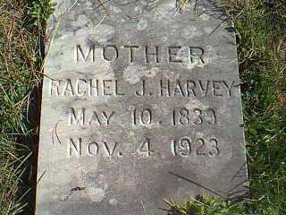 HARVEY, RACHEL J. - Taylor County, Iowa | RACHEL J. HARVEY