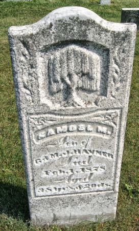 HAVNER, SAMUEL M. - Taylor County, Iowa | SAMUEL M. HAVNER