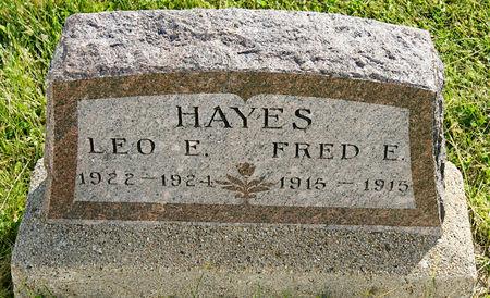 HAYES, LEO EDWARD - Taylor County, Iowa | LEO EDWARD HAYES