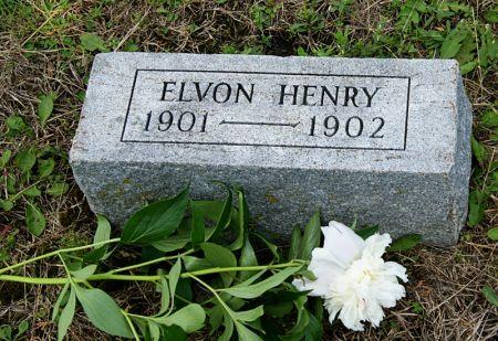 HENRY, ELVON ROBERT - Taylor County, Iowa   ELVON ROBERT HENRY