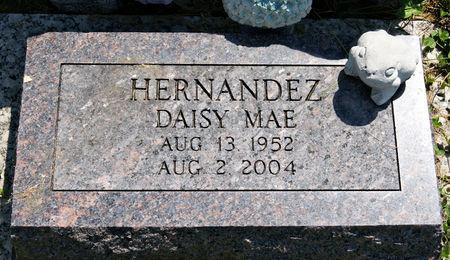 HERNANDEZ, DAISY MAE - Taylor County, Iowa | DAISY MAE HERNANDEZ
