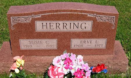 RIDENOUR HERRING, SUSAN CRYSTAL