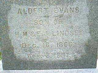 LINDSEY, ALBERT EVANS - Taylor County, Iowa | ALBERT EVANS LINDSEY