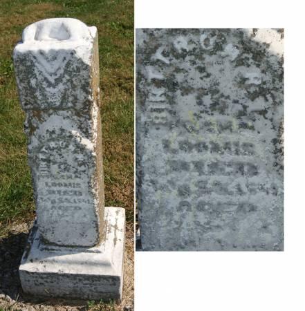 LOOMIS, BIRTTRON R. T. - Taylor County, Iowa   BIRTTRON R. T. LOOMIS