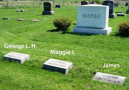 MARSH, FAMILY PLOT OF JAMES - Taylor County, Iowa | FAMILY PLOT OF JAMES MARSH