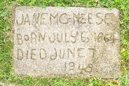 MCNEESE, TABITHA JANE - Taylor County, Iowa | TABITHA JANE MCNEESE