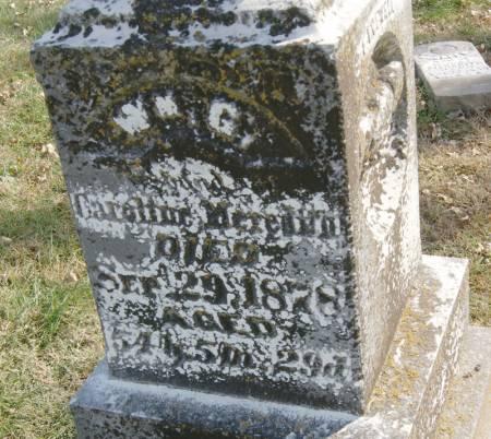 MEREDITH, WILLIAM GRAY - Taylor County, Iowa | WILLIAM GRAY MEREDITH