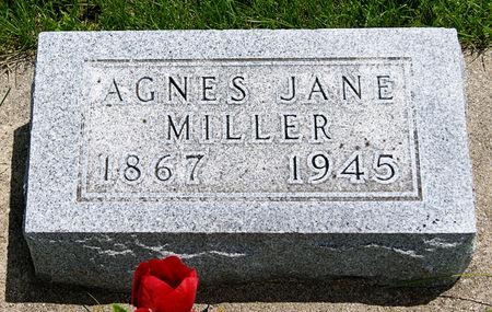 MILLER, AGNES JANE - Taylor County, Iowa | AGNES JANE MILLER
