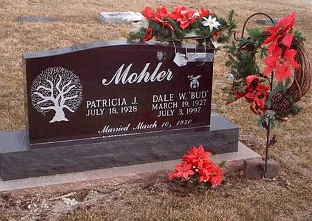 MOHLER, PATRICIA J - Taylor County, Iowa | PATRICIA J MOHLER
