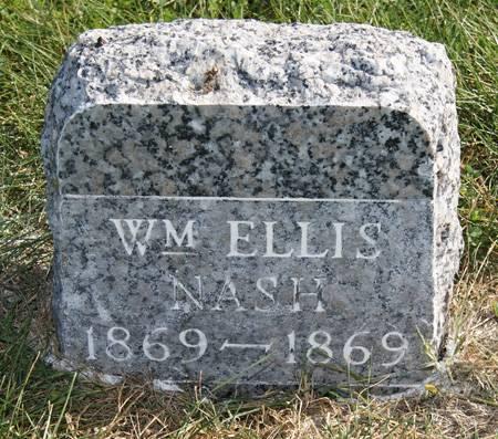 NASH, WILLIAM ELLIS - Taylor County, Iowa   WILLIAM ELLIS NASH