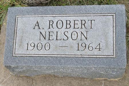 NELSON, ALEX ROBERT - Taylor County, Iowa   ALEX ROBERT NELSON