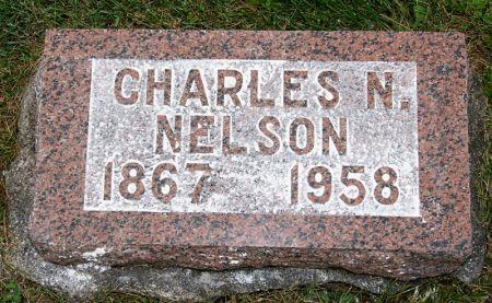 NELSON, CHARLES N. - Taylor County, Iowa   CHARLES N. NELSON
