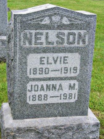 NELSON, ELVIE - Taylor County, Iowa   ELVIE NELSON