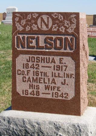 NELSON, CAMELIA JANE - Taylor County, Iowa   CAMELIA JANE NELSON