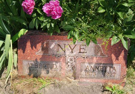 NYE, ANNETTA - Taylor County, Iowa | ANNETTA NYE