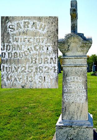 WOOD O'DOUGHERTY, SARAH - Taylor County, Iowa   SARAH WOOD O'DOUGHERTY