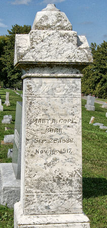 DEWOLF SALSBURY, MARY ANN - Taylor County, Iowa | MARY ANN DEWOLF SALSBURY