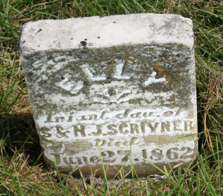 SCRIVNER, ELLY - Taylor County, Iowa   ELLY SCRIVNER