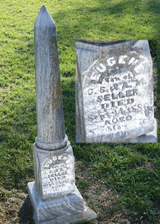 SELLER, EUGENE CARNS - Taylor County, Iowa   EUGENE CARNS SELLER