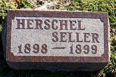 SELLER, HERSCHEL  DEWEY - Taylor County, Iowa | HERSCHEL  DEWEY SELLER
