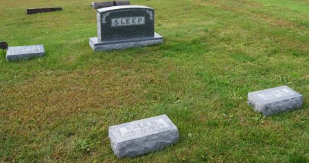 SLEEP, DALE HENRY, FAMILY PLOT OF - Taylor County, Iowa | DALE HENRY, FAMILY PLOT OF SLEEP