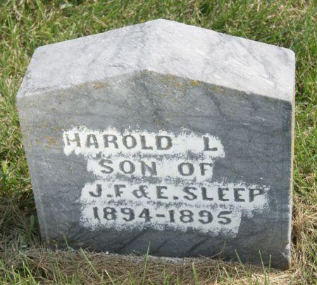 SLEEP, HAROLD L. - Taylor County, Iowa | HAROLD L. SLEEP