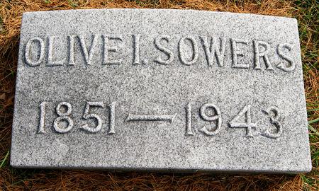 CARSON SOWERS, OLIVE IRENE - Taylor County, Iowa | OLIVE IRENE CARSON SOWERS