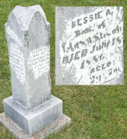 STEWART, BESSIE A. - Taylor County, Iowa | BESSIE A. STEWART