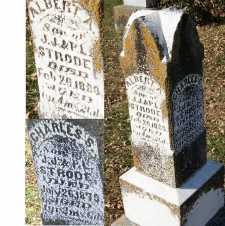 STRODE, ALBERT ALLEN - Taylor County, Iowa | ALBERT ALLEN STRODE