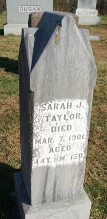 TAYLOR, SARAH JANE - Taylor County, Iowa | SARAH JANE TAYLOR