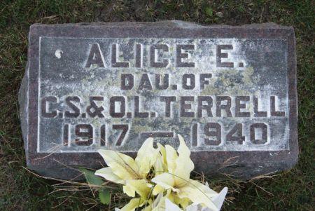 TERRELL, ALICE EDNA - Taylor County, Iowa   ALICE EDNA TERRELL