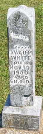 WHITE, MARTHA MAY - Taylor County, Iowa | MARTHA MAY WHITE