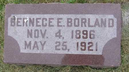 BORLAND, BERNECE E. - Union County, Iowa | BERNECE E. BORLAND