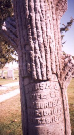 JOHNSON HURLBURT, LOUISA - Union County, Iowa | LOUISA JOHNSON HURLBURT