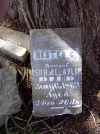 AYLOR, HESTER C. - Van Buren County, Iowa | HESTER C. AYLOR