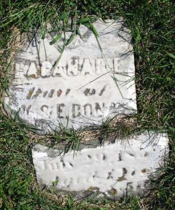 BONAR, BAGANAH E. - Van Buren County, Iowa | BAGANAH E. BONAR