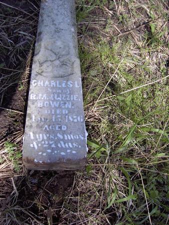 BOWEN, CHARLES L. - Van Buren County, Iowa | CHARLES L. BOWEN
