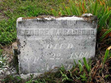 BRADFORD, GEORGE W. - Van Buren County, Iowa | GEORGE W. BRADFORD