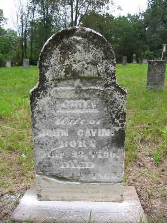 MANN CAVIN, JUDA - Van Buren County, Iowa | JUDA MANN CAVIN