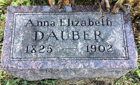 DAUBER, ANNA ELIZABETH - Van Buren County, Iowa   ANNA ELIZABETH DAUBER