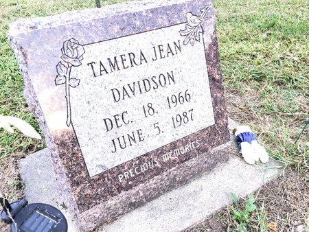 DAVIDSON, TAMERA JEAN - Van Buren County, Iowa | TAMERA JEAN DAVIDSON