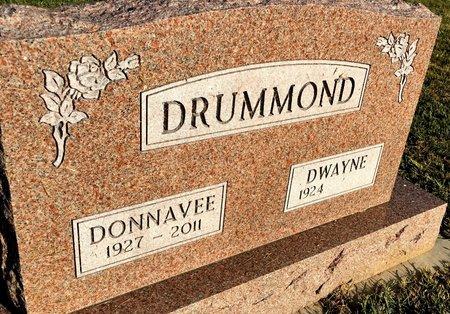 FISHER DRUMMOND, DONNAVEE - Van Buren County, Iowa | DONNAVEE FISHER DRUMMOND