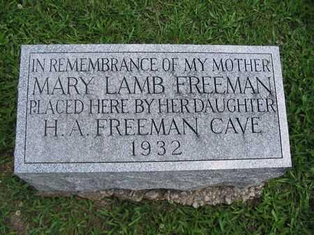 FREEMAN, MARY - Van Buren County, Iowa | MARY FREEMAN