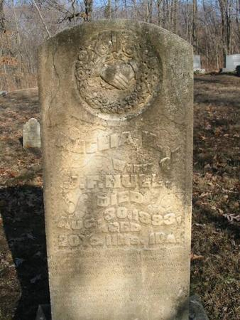 HULL, AMELIA M. - Van Buren County, Iowa | AMELIA M. HULL