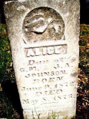 JOHNSON, ALICE - Van Buren County, Iowa | ALICE JOHNSON