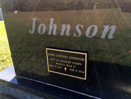 JOHNSON, JOHN LINDSEY - Van Buren County, Iowa   JOHN LINDSEY JOHNSON